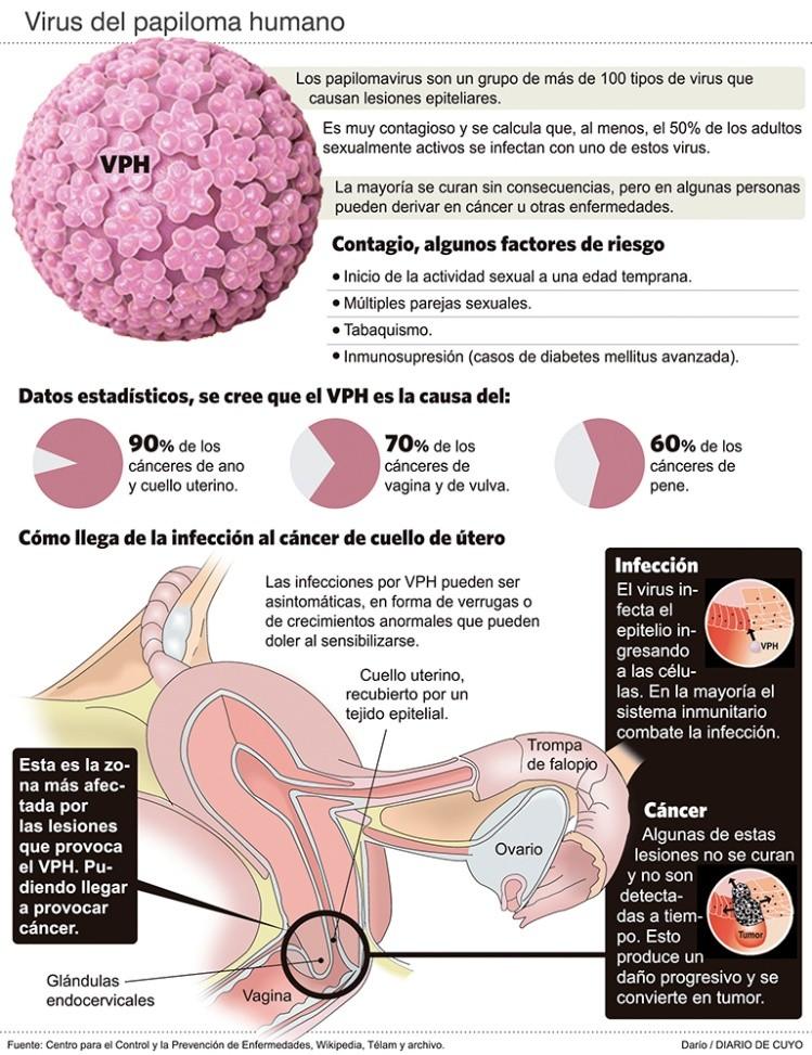 cancer de utero por hpv