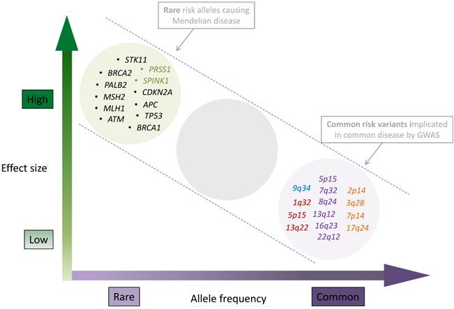 pancreatic cancer genetics paraziti u telu ciscenje