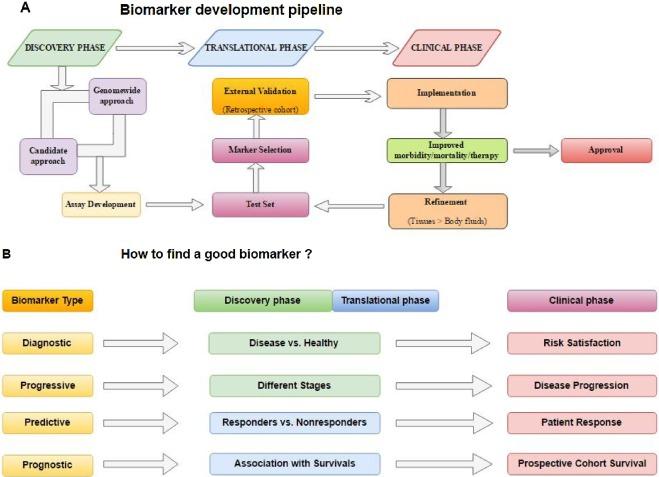 gastric cancer biomarker