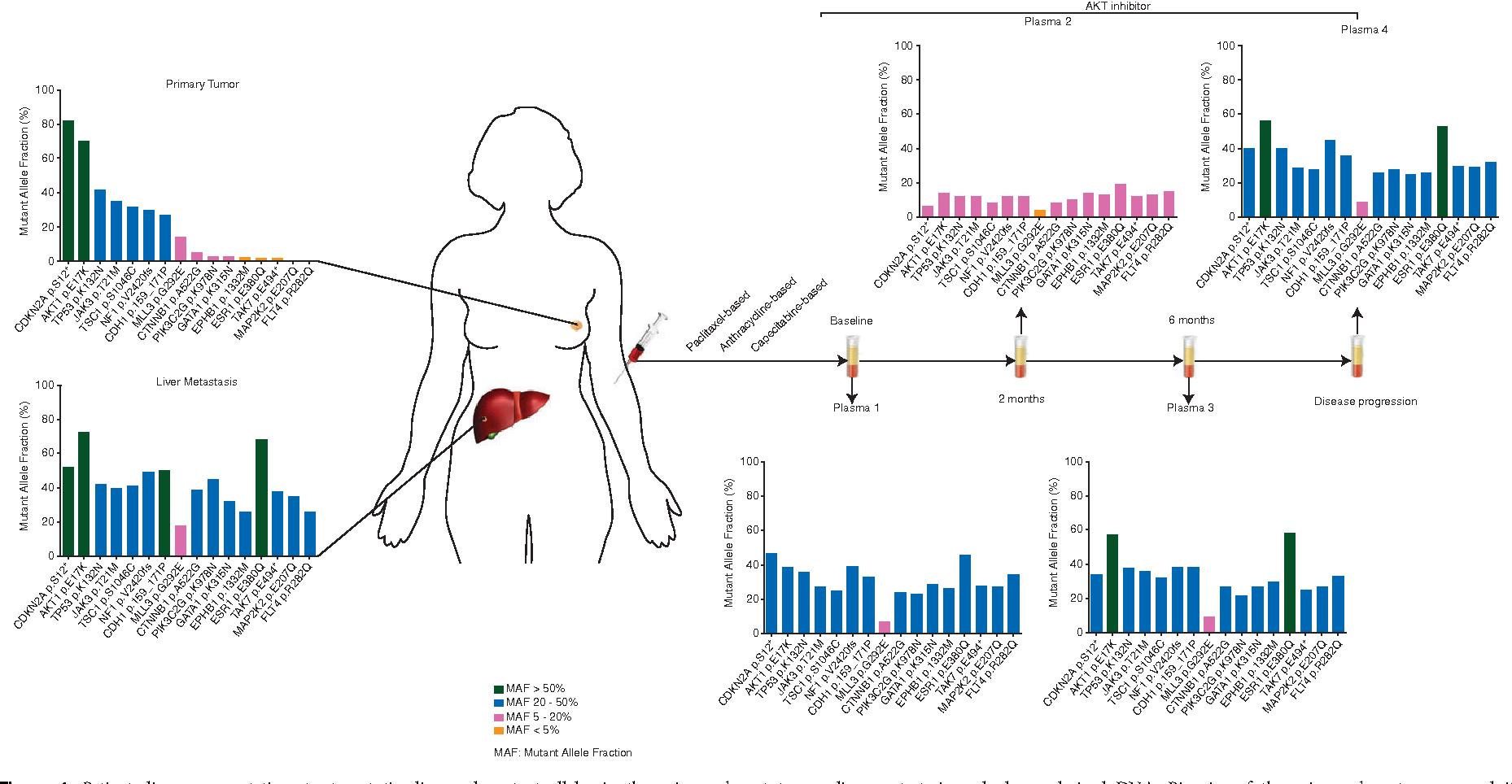 breast cancer genetic heterogeneity wart treatment thuja
