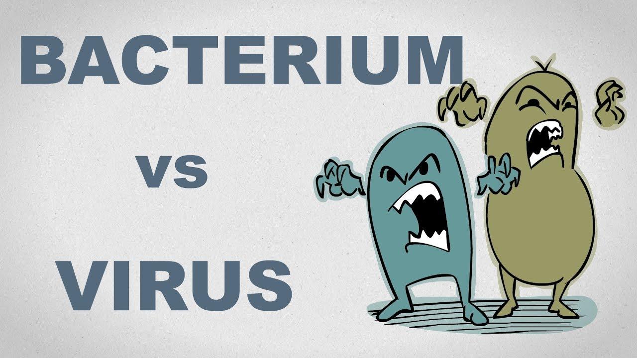 hpv virus retrovirus paraziti intestinali simptome si tratament