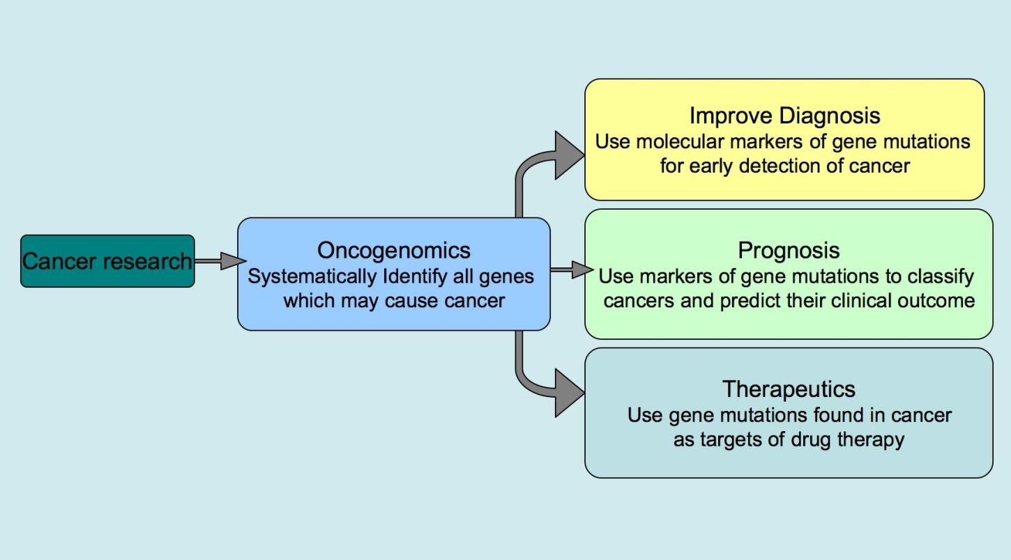 cancer and genetic effects are examples of