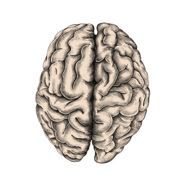 cancer cerebral e hereditario