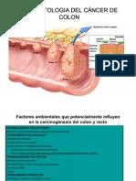 Anatomie patologică varicele esofagiene