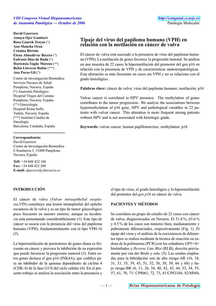 virus papiloma humano p16