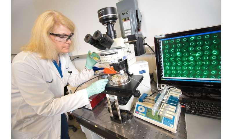 pancreatic cancer blood test screening