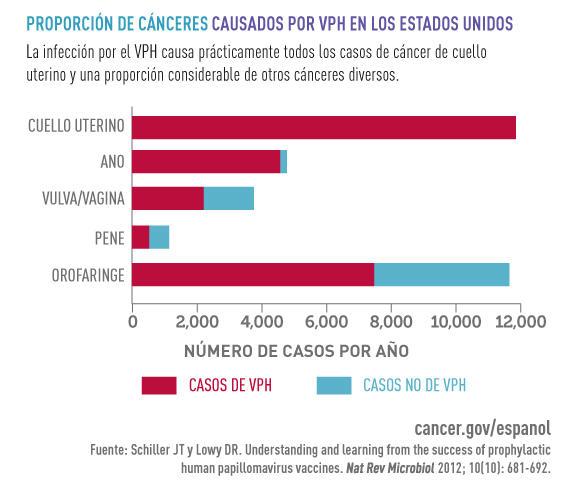 hpv cancer de cuello uterino