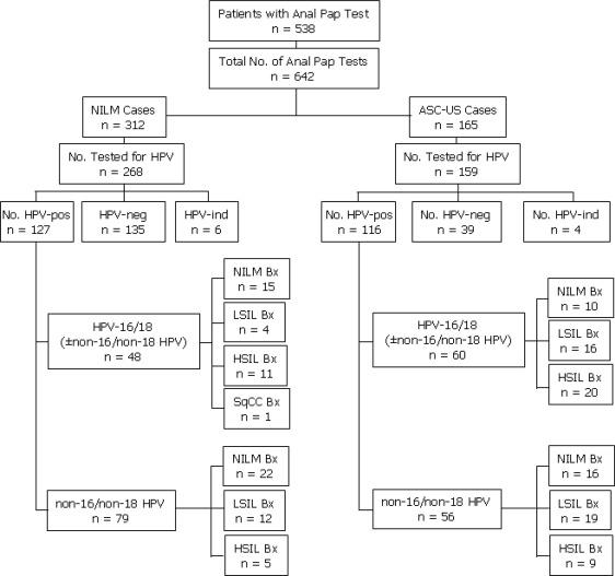 hpv high risk not 16/18 cancer de hodgkin estadio 4