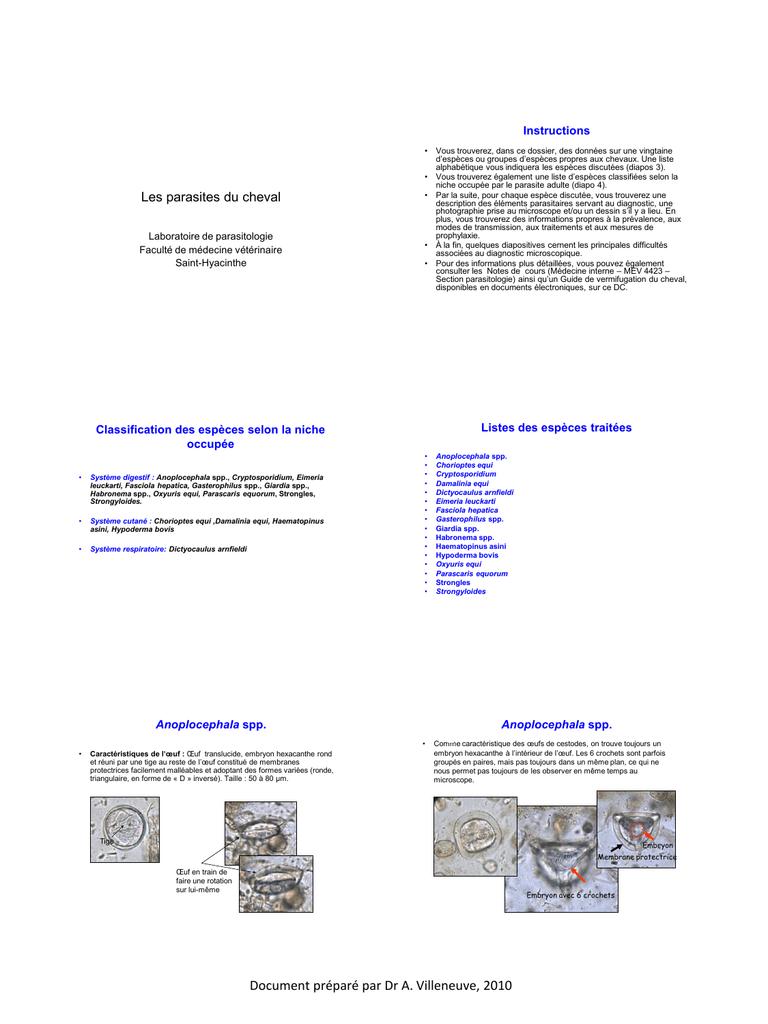 parazitii 20 cm enterobius vermicularis pictures