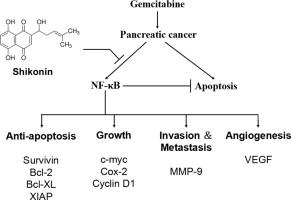 cancerul esofagian
