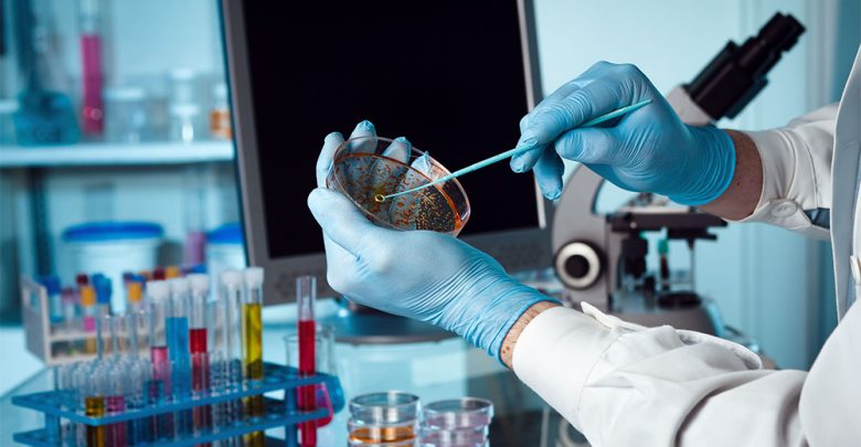papilloma virus e naso renal cancer lung nodules