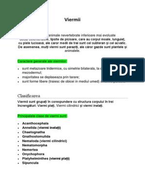 papilloma tumor nedir papilloma linguale cause