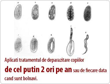 paraziti intestinali om quanto dura intervento papilloma virus