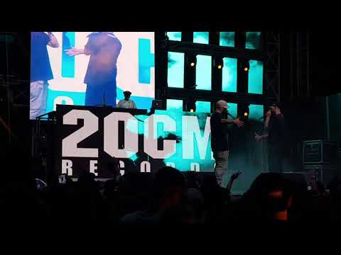 🎧Parazitii - Parc-as f**e ceva (Videoclip Lyrics Versuri Info)HD Video Music