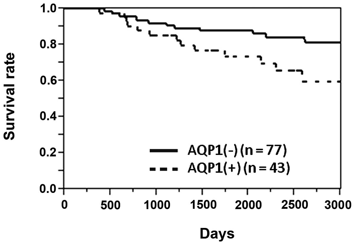 rectosigmoid cancer survival rate gastric cancer markers
